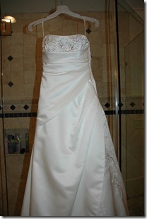 The Front of the Dress By StarMama
